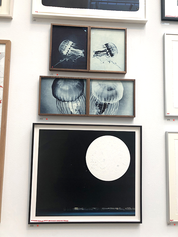 Jellyfish artwork at the 2019 Summer Exhibition at the Royal Academy of Arts