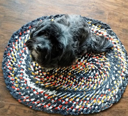 oval shaped twined multicoloured rag rug